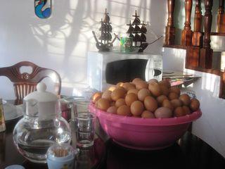 EOTOO Eggs